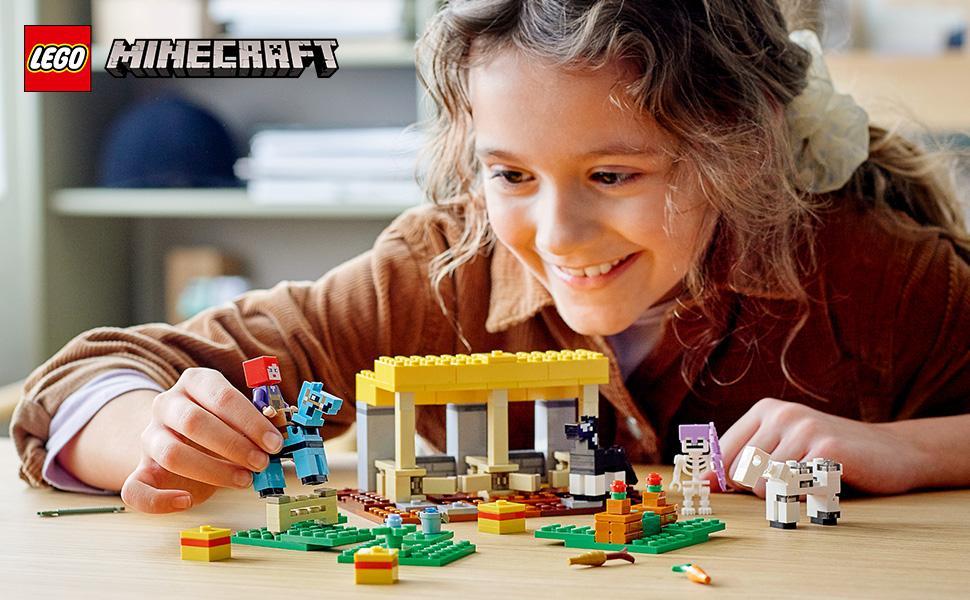 21171 Minecraft