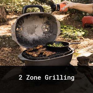 2 Zone Grilling
