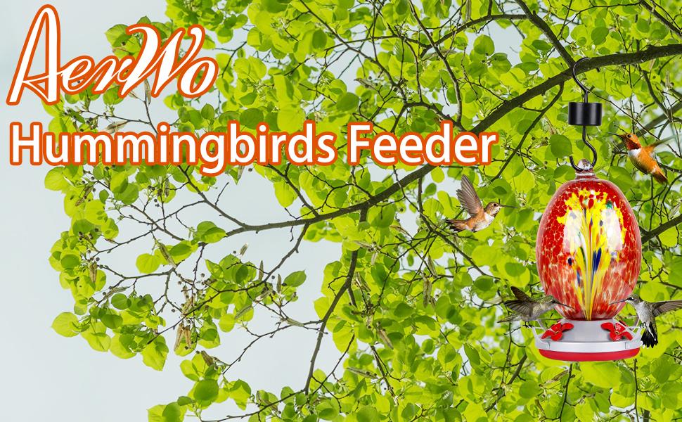 humming birds feeders