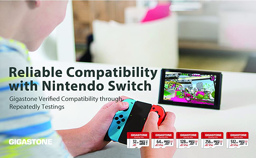 compatible for nintendo switch