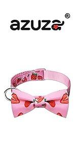 strawberry bowtie dog collar