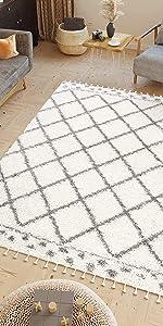 tapiso tapis shaggy moderne