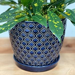 Blue Ceramic Planter Pot Set