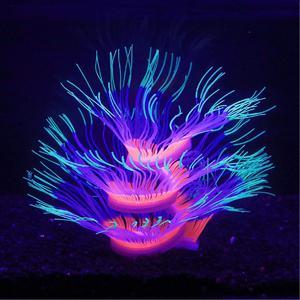 Green glowing anemone