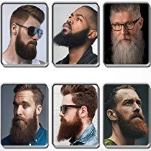 multi functional beard straightener