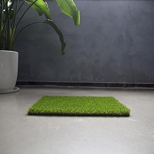 dogs grass pee pad