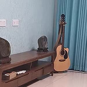 Placed in the living room