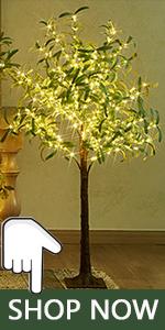 olive tree lights