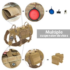Molle system for pouches