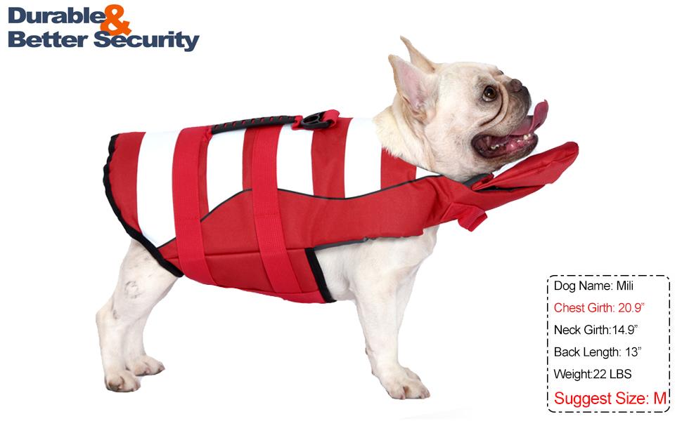 French Bulldog Life Jacket