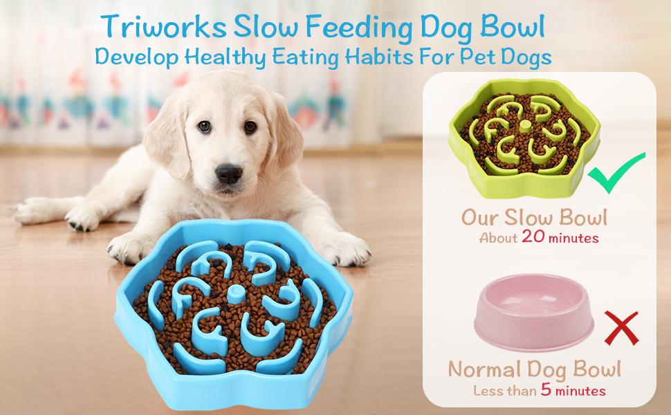 Slow Feeder Dog Bowl Slow Feeding Maze Dog Bowl Slow Eating Pet Bowl Dogs Cats Feeding Pans Dishes