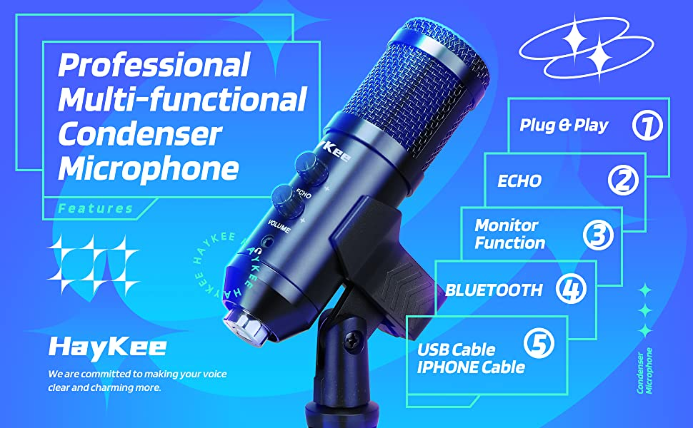 Professional Multi-functional Condenser Microphone
