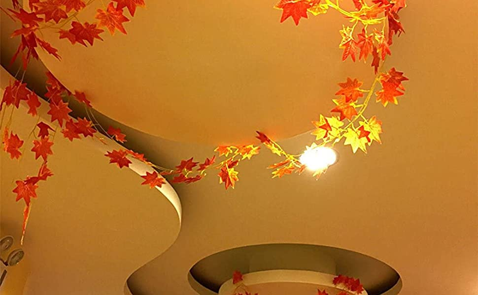 maple leaves for decoration