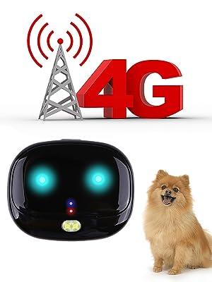 4G Pet tracker