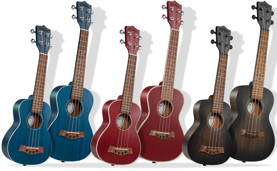 six ukuleles, soprano and concert, brown, blue and red, mahogany body, walnut frets, ABS binding