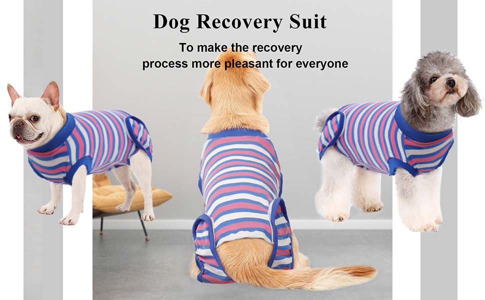 dog recovery suit