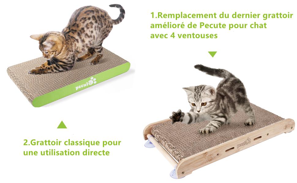 tapis griffoi pour chat