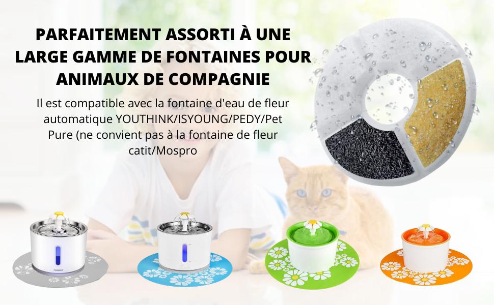 filtre fontaine chat eau