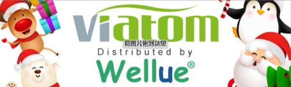 Brand Wellue