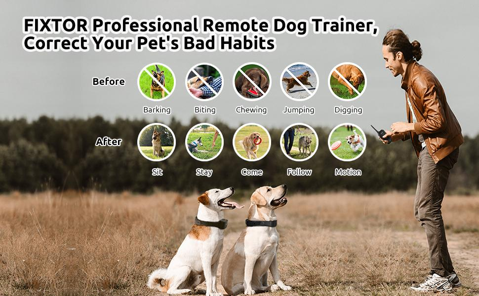 FIXTOR Professional Remote Dog Trainer, Correct Your Pet's Bad Habits