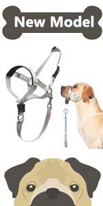 head collar for dog