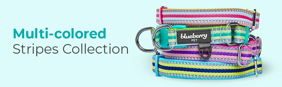multi-colored stripe collection - 2