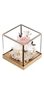 Glass Flowers Room
