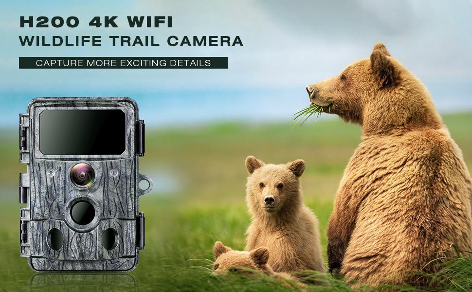 H200 trail camera
