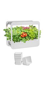 GrowLED Indoor Herb Garden Kit  Window Shape Plus with 4 Plant Pots