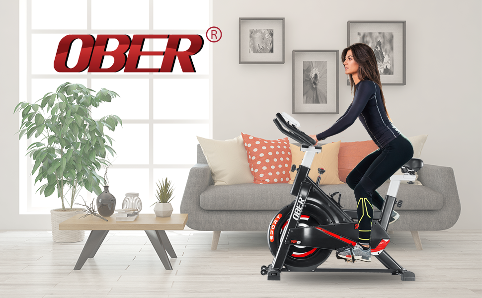 Ober Stationary Exercise Bike