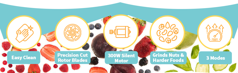 Icons smothies blender juice maker
