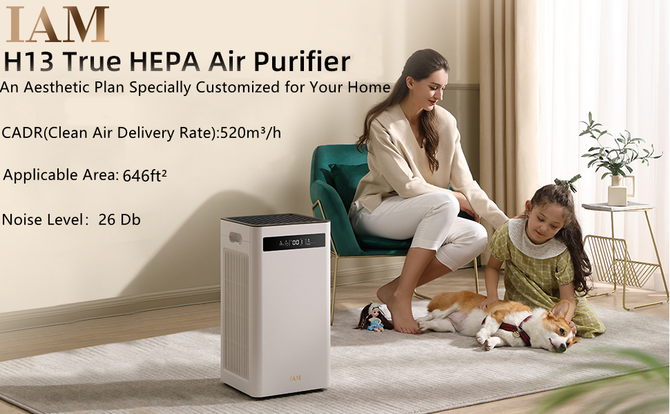 air purifier,air purifier large room, air purifier for home