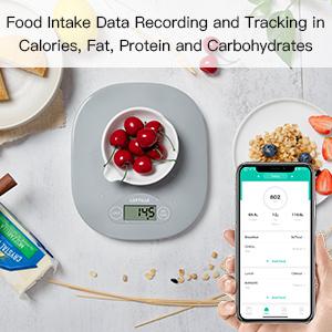 Food Intake Data Recording