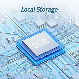 Secure Local Storage