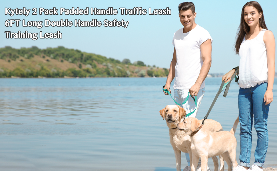 dog training leash dog leash with 2 handles for safety control