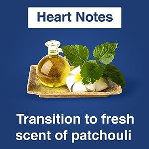 Heart Note Patcholi