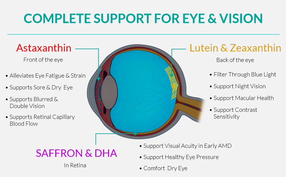 complete vision support supplement vitamin eye sight cataract ardes floater visible