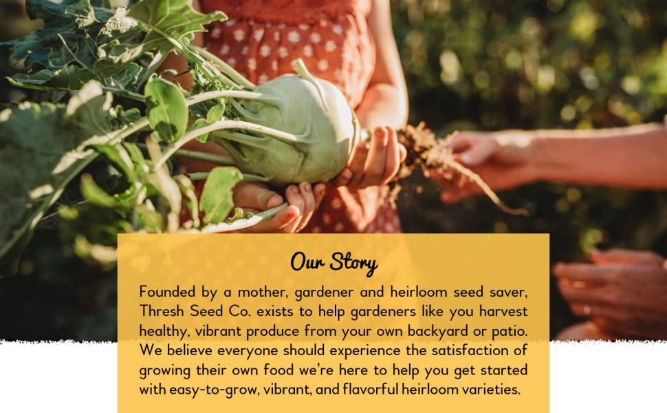 Thresh Seed Co. offers easy-to-grow, vibrant, and flavorful heirloom varieties