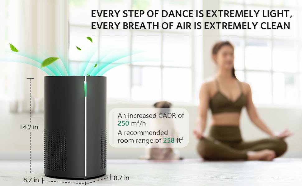 Air Choice Air Purifier