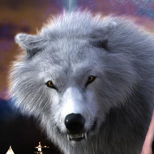 Kyle sous forme de loup