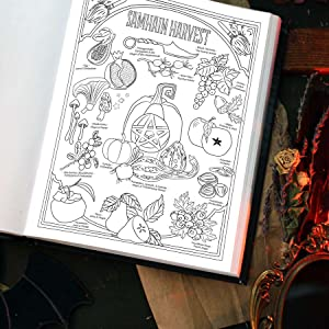 Samhain Harvest Correspondences