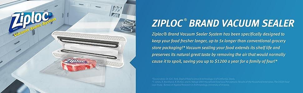 Ziploc V151 Vacuum Sealer White Amazon Ca Home Amp Kitchen
