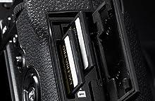 Dual SD Card Slots