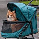 Why use a pet stroller