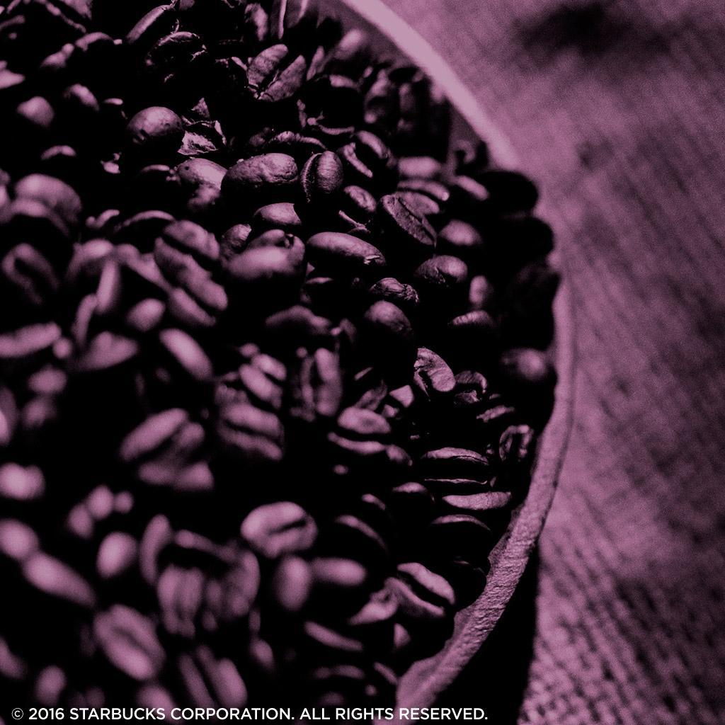 Café molido Starbucks House Blend, bolsas de 20 ...