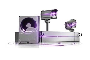wd 4TB Surveillance Hard Disk Drive