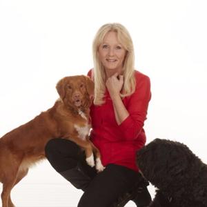 Pet Supplies : Pet Squeak Toys : Nina Ottosson Dog Fighter