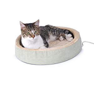 heated, cat, bed