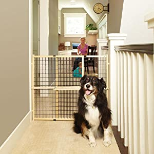 Amazon.com: MyPet Petgate Extra Wide Wire Mesh Gate fits openings ...