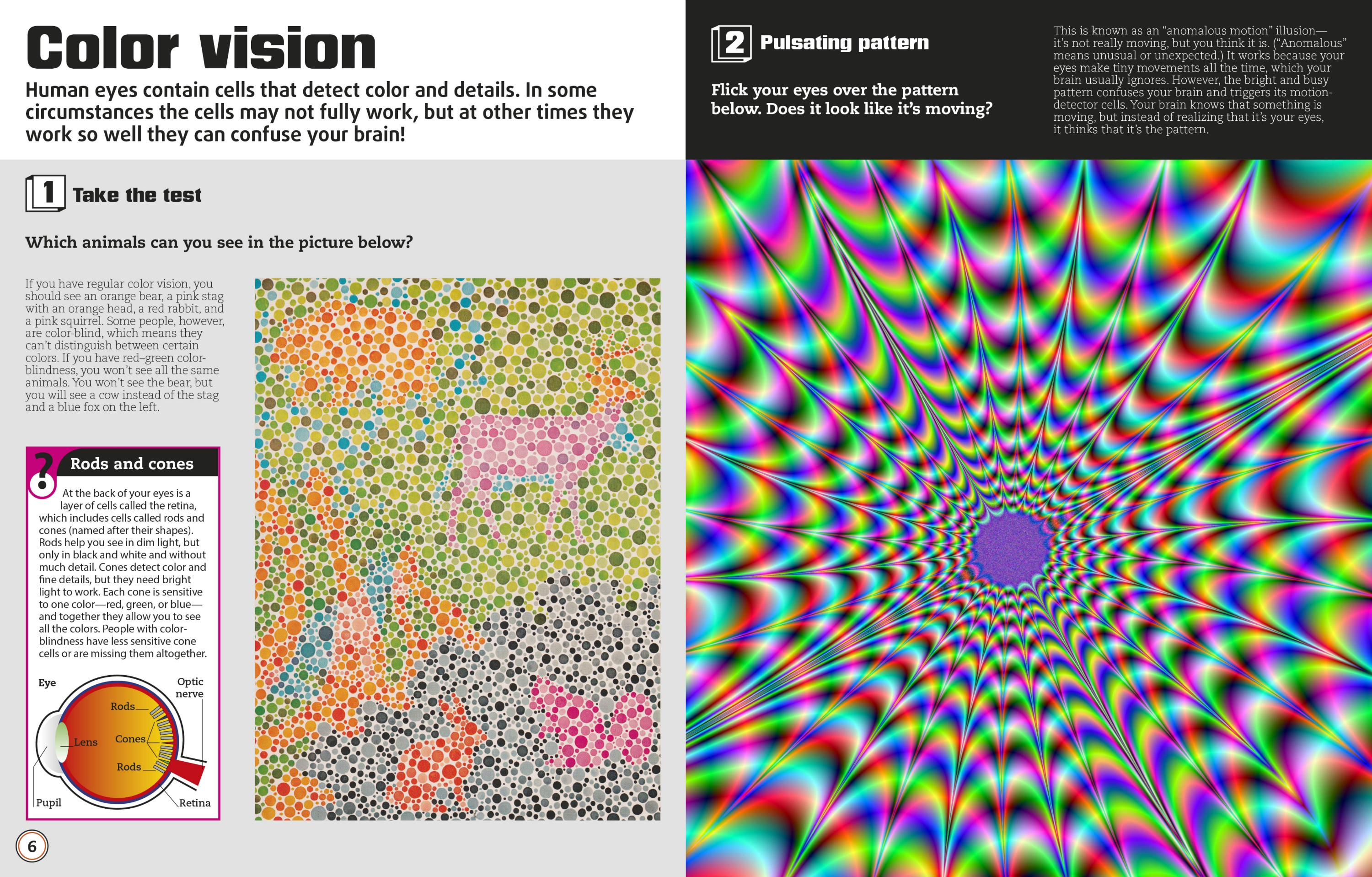 Color Illusions: Visual Tricks, Fantastic Facts, and
